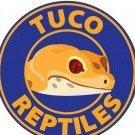 TUCO REPTILES