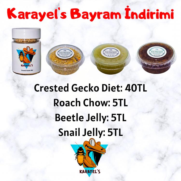 Karayel's Bayram İndirimi.png